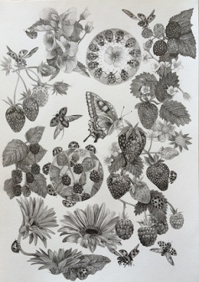 Lady bugs picnic, Drawing, Pencil on paper, 29 x 42cm, $1.220